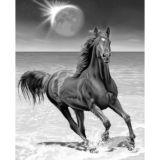 Casa Rosso Faux Mink Blanket QB Horse moon